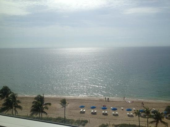Sonesta Fort Lauderdale Beach: view in morning from rm 903