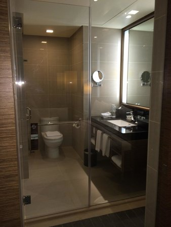 Toilet With Glass Panel Can Be Covered With Sliding Door For
