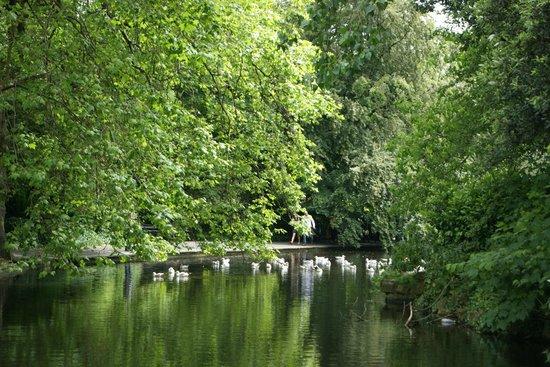 St Stephen's Green : Stephen's Green Park
