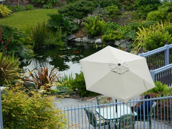 Best Western Plus Bayshore Inn : The koi pond in the garden.