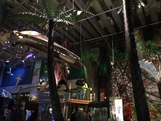Te Papa Tongarewa (Museum of New Zealand): The outdoors inside