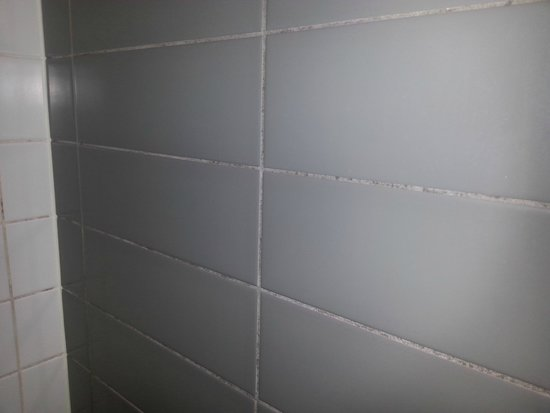 Causeway 353 Hotel: Mouldy grout in Bathroom