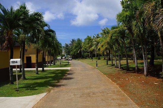 Mariana Resort & Spa: дорожка к виллам