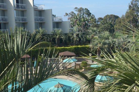 Hilton La Jolla Torrey Pines: Pool area