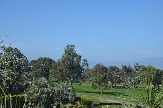 Hilton La Jolla Torrey Pines: Gliders over the golf course