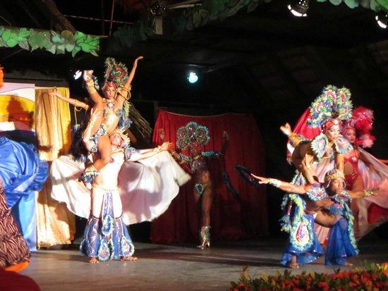 Melia Las Antillas: Entertainment