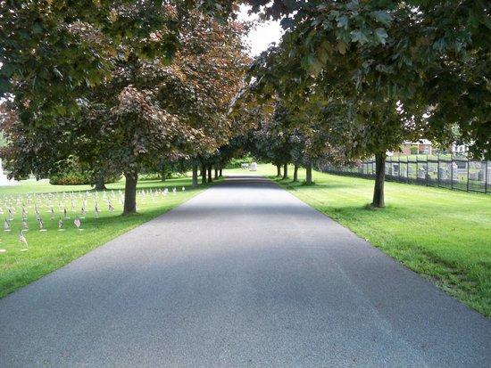 Gettysburg National Cemetery: Trees lining walkway