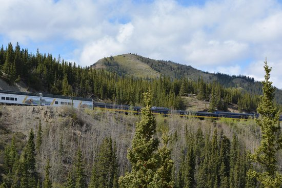 Denali Grizzly Bear Resort: You can see the train as it makes it way into Denali from your balcony