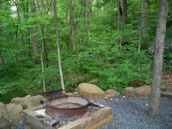 Gettysburg / Battlefield KOA: View from cabin porch