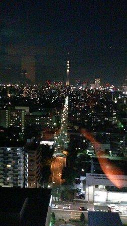 Hotel East 21 Tokyo: ラウンジからのスカイツリー