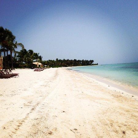 Tortuga Bay Hotel Puntacana Resort & Club: Not a sole around, a beach to yourself!
