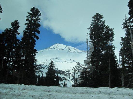 Mount Rainier : Mt Rainier