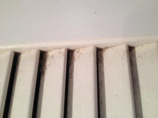 Pier Watch II by Palmetto Vaca: Dirt on door slats