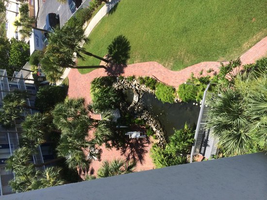 Guy Harvey Outpost, a TradeWinds Beach Resort: Courtyard with koi pond.