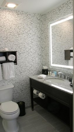 Hampton Inn Washington, D.C./White House: Rm 810 bath