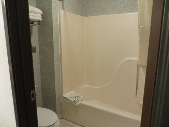 BEST WESTERN PLUS Dockside Waterfront Inn: Bathroom