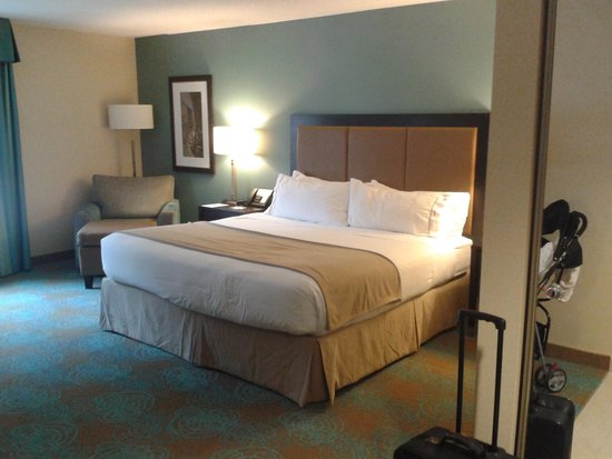 Holiday Inn Express Hotel & Suites Waterloo - St Jacobs: Room with 1 king bed