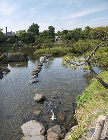 Suizenji Jojuen Garden : пруд с карпами