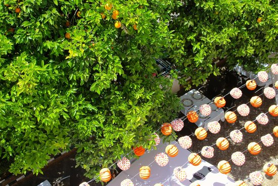 Hotel Boutique Elvira Plaza: valencia orange trees and restaurant below our room