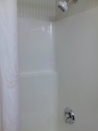 Comfort Inn & Suites: Shower head