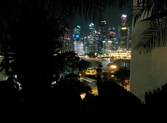 Mandarin Oriental, Singapore: View from Pool Area