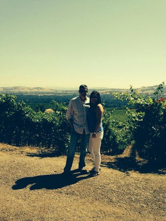 Valet of the Moon Wine Tours: BWise vineyard