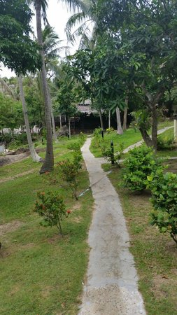 Shiralea Backpackers Resort: The grounds were nice!