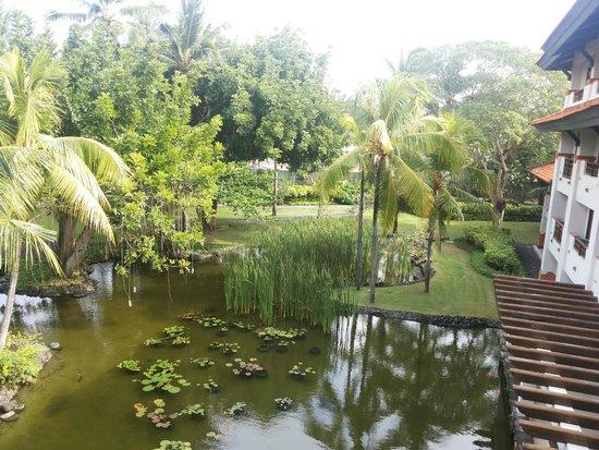 Grand Hyatt Bali: view from my room