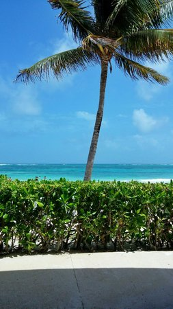 Dreams Tulum Resort & Spa: Playa del dreams