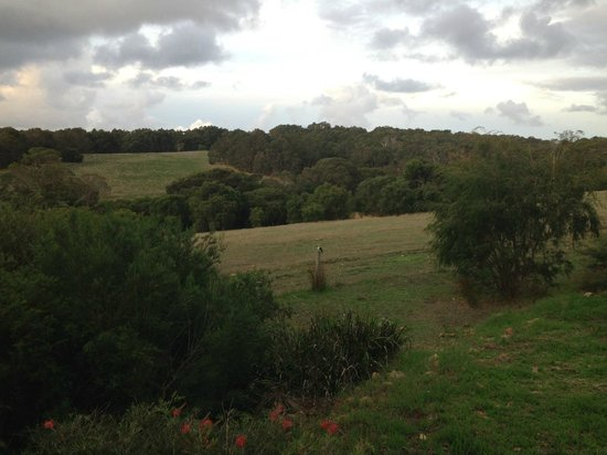 Hilltop Studios Margaret River: View from porch