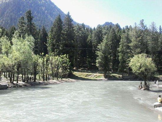Srinagar, Hindistan: Gulmag..beautiful scenery