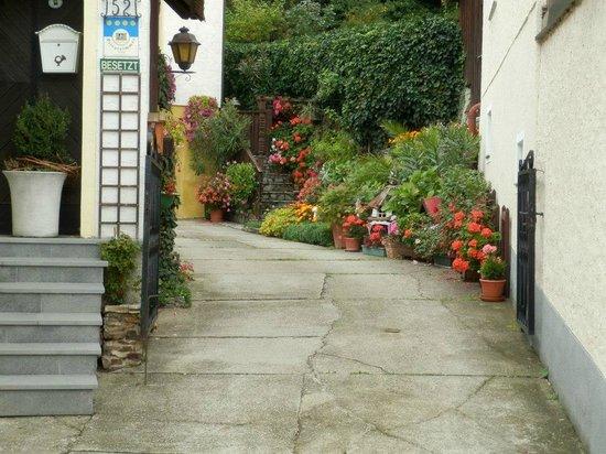 Wachau Valley : Цветы во дворе дома