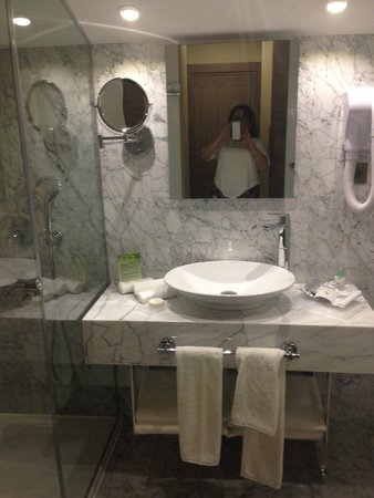 Boutique Saint Sophia Hotel : Lovely Bathroom, if a bit indiscrete