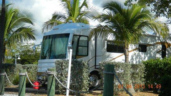 Everglades Isle RV Resort: Beautiful Sites