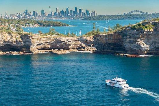 Fantasea Cruising Sydney