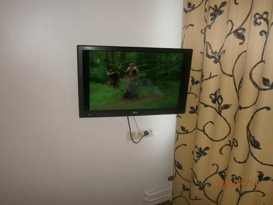 Ava Hotel: Телевизор в номере