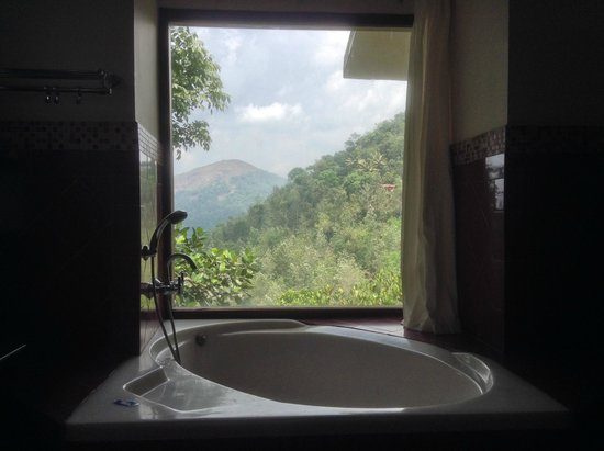 Wild Corridor Resort and Spa by Apodis: The bathtub view
