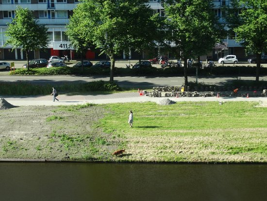 Crowne Plaza Amsterdam South: View from room (3rd floor)