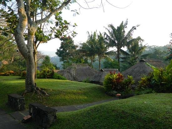 Maya Ubud Resort & Spa: view from our garden villa