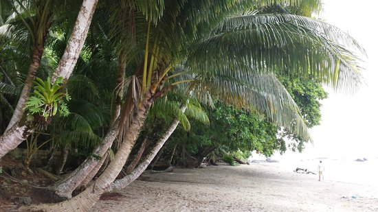 Drake Bay, Costa Rica: Cano Island