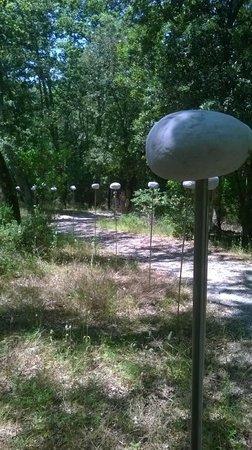 Parco Sculture Del Chianti: suggestiva opera sul sentiero del parco