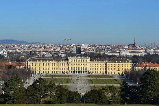 Schloss Schönbrunn: вид на дворец