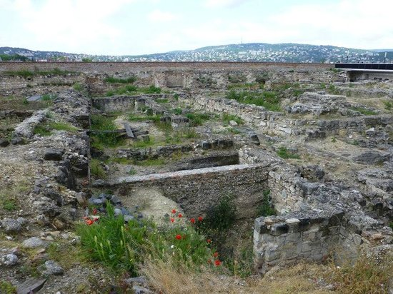 Burgpalast: Ruins near Buda Castle