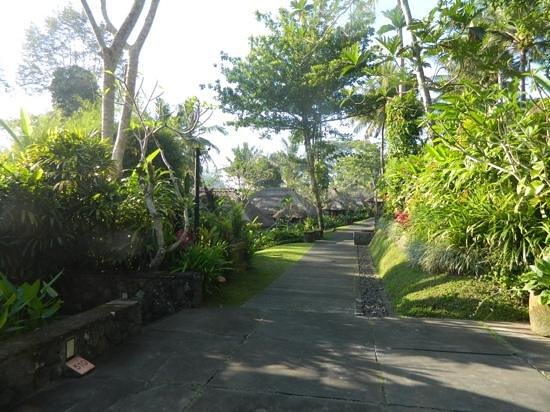 Maya Ubud Resort & Spa : garden villas!