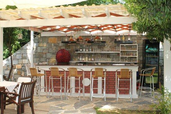 Otel Gumusluk: The bar
