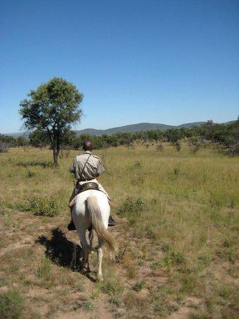 Mabula Game Lodge : horseback ride safari