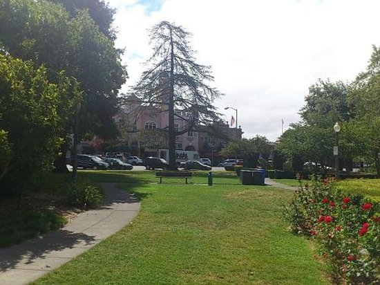 Sonoma Plaza : ソノマ・プラザ内