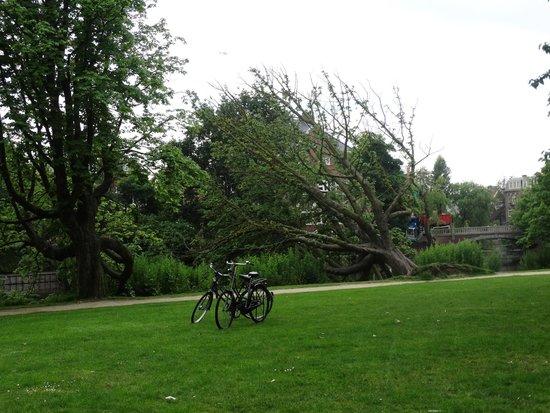 MacBike: In Vondel Park