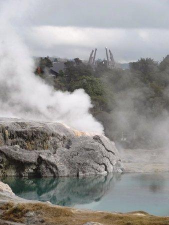 Whakarewarewa - The Living Maori Village : Thermal area