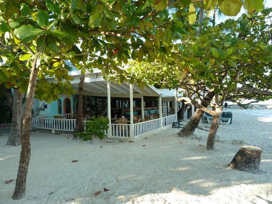Coconut Grove Restaurant: Day time